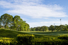 Golf Park. Beautiful golf park in the morning royalty free stock photo