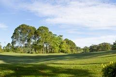 Golf Park. Beautiful golf park in the morning stock photos