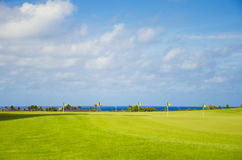 Golf park. Beautiful golf park in summer day in Hawaii, Kauai Royalty Free Stock Image