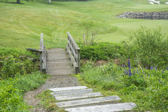 Golf Path. This is a golf path for the walkers of the golf course Stock Image