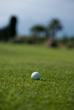 Golf play Royalty Free Stock Image