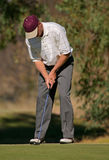 Golf player. Man putting on the green during a golf match stock photo
