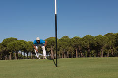 Golf player aiming perfect  shot Royalty Free Stock Photo