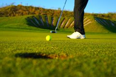 The golf player and the  golf ball stock photography