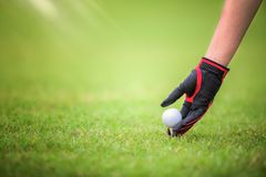 Golf player and golg ball on Tee off green stock photography