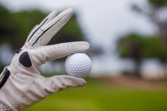 Golf player man holding golf-ball in his hand Royalty Free Stock Photography