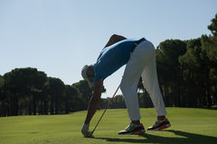 Golf player placing ball on tee Royalty Free Stock Image