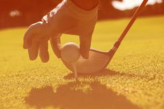 Golf player placing ball on tee royalty free stock photo