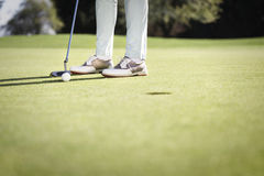 Golf player putting with copyspace. Stock Photos