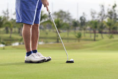 Golf player putting on the green. Golf player putting ball on the green Royalty Free Stock Images