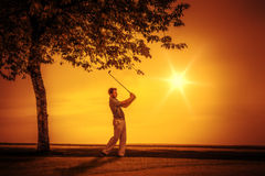 Golf player sunset Royalty Free Stock Image