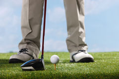 Golf player teeing up to hit ball Royalty Free Stock Photography