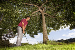 Golf player under tree. Stock Photos