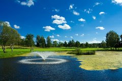 Golf pond with fontain. Swedish golf landscape on a sunny day in July Stock Photos