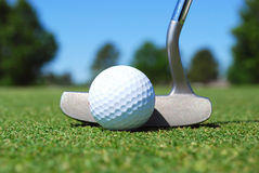 Golf Putt Stock Photo