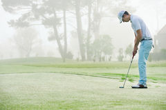 Golf putt green. Golf man putting on green and aiming to sink golf putt shot on course Stock Photography