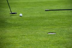 Golf putting on green. Of colf course background Royalty Free Stock Photography