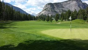 Golf putting green in mountains. Beautiful golf putting green in the rocky mountains of Alberta.  Outstanding view of the green Stock Images