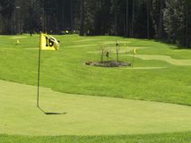 Golf putting range Stock Image