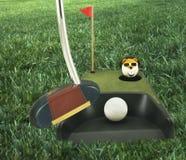 Golf (que pone práctica) Fotografía de archivo libre de regalías
