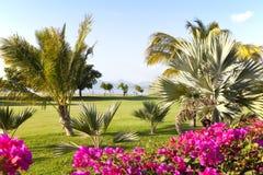 Golf Resort Royalty Free Stock Image