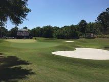 Golf sawgrass 2015 Lizenzfreie Stockbilder