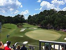Golf sawgrass 2015. PGA Tour Florida Stock Photos