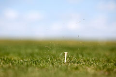 Golf-Schwingen Lizenzfreies Stockfoto