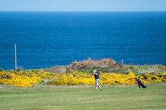 Golf site with wonderful sea background and cliffs Stock Image