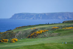 Golf site with wonderful sea background and cliffs Royalty Free Stock Images