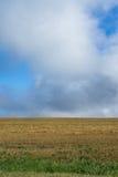 Golf som passerar horisonten Royaltyfria Bilder