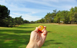 Golf in Spain Royalty Free Stock Images