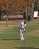 Golf spielen im Fall stockfotografie