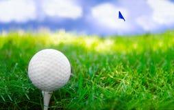 Golf spielender Tag lizenzfreie stockfotos