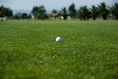 Golf spielender Tag Lizenzfreies Stockbild