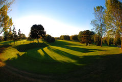 Golf spielendes Grün Stockbilder