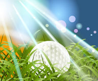 Golf Sport. Concept, golf ball between grass Royalty Free Stock Image