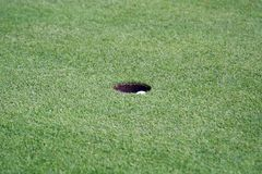 Golf Sports Royalty Free Stock Photo