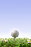 Golf sports Royalty Free Stock Photography