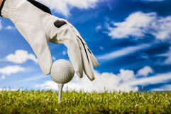 Golf stuff on golf field Royalty Free Stock Photos