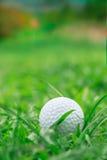 Golf su erba ruvida Immagini Stock