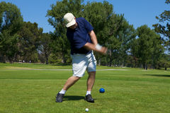 Golf Swing royalty free stock image