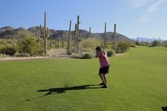 Golf swing Arizona golf course Stock Images