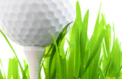 Free Golf Tee Royalty Free Stock Photography - 3691447