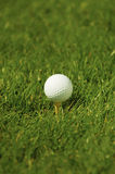 Golf Tee. A golf ball on grass ready to be tee'd off Stock Image