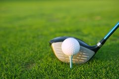 Golf tee ball club driver in green grass course Royalty Free Stock Photography
