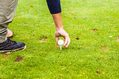 Golf Tee Stock Photo