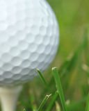 Golf tee two Royalty Free Stock Photo