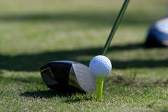 Golf Teeing Off Royalty Free Stock Images