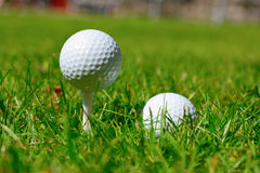 Golf Tees and Ball Stock Images